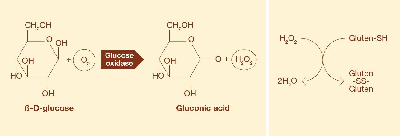 glucose oxidase